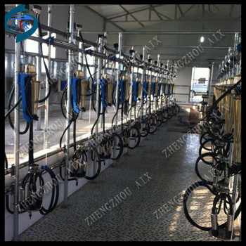 Herringbone dairy cow milking equipment milking parlour for Parlour equipment