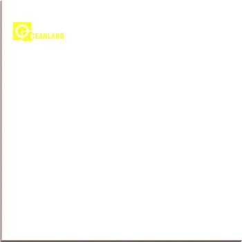 White Gres Monococcion Porcellanato Floor Tiles 800x800