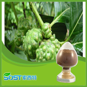 competive price and high quality natural morinda extract