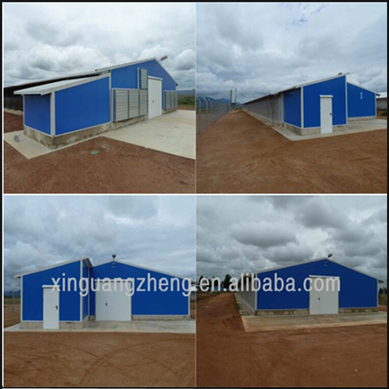 prefab steel structure house for chicken cage and warehouse construction