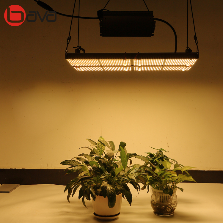 Hlg V2 Quantum Board Samsung Indoor Plant 4x Qb120 Quantum Boards (4000k)  Lm561c 301b - Buy Quantum Led Grow Light,Lm301b Quantum Board