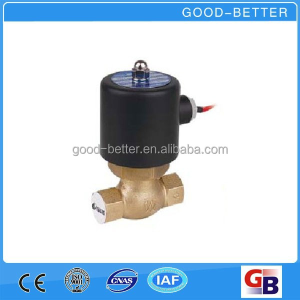 "Hot selling 1/2"" steam solenoid valve with 110V coil"