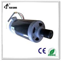 crazy fit massage dc motor