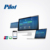 PILOT Online Prepaid Digital Smart Meter by visa card