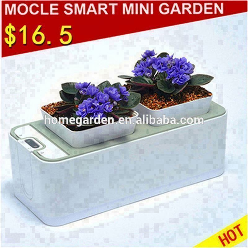 flowers decoration box