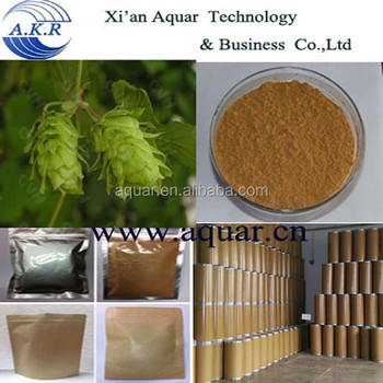 2017 the newest batch Hops Flower Extract with Flavonoid/Humulus Lupulus Extract