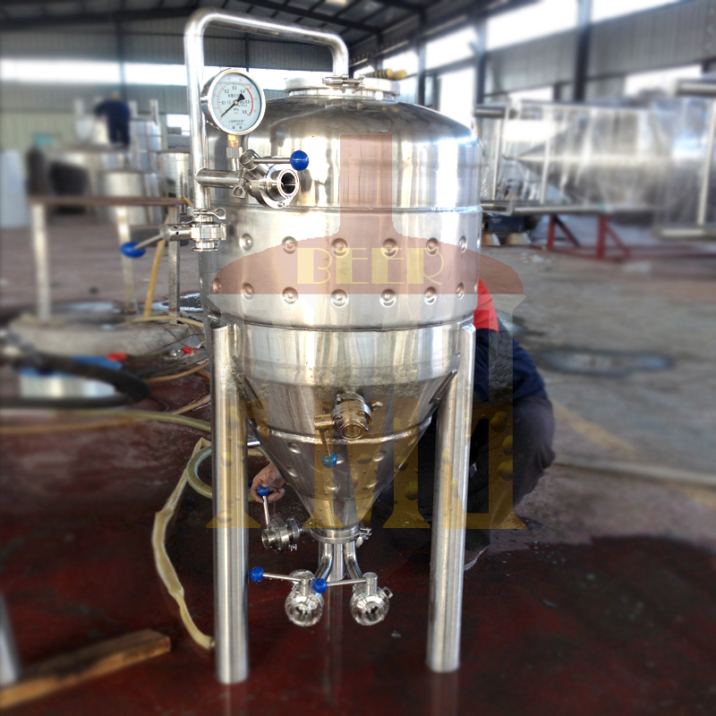 High quality 100 liter conical fermenter for warranty period 3 months