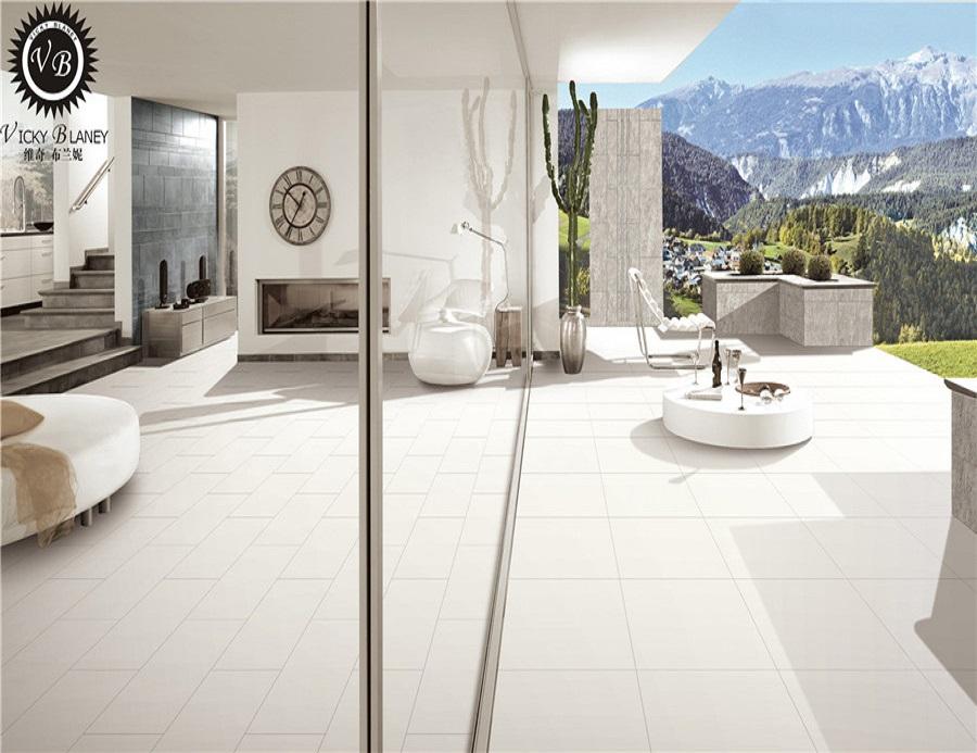 Modern Matt Glazed Porcelain Floor Tile 60 X 60mm White Buy Modern