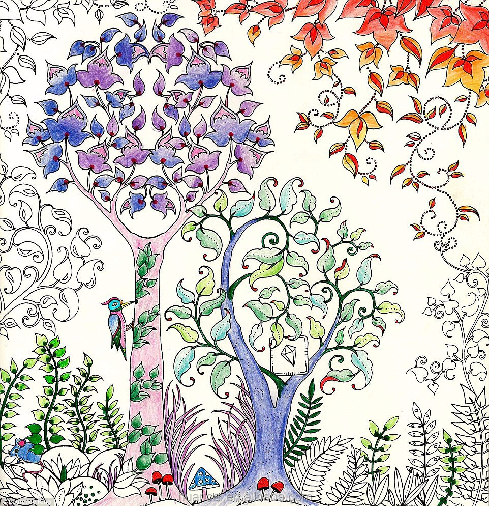 2016 Best Selling Hand-painting Secret Garden Adult Coloring Book ...