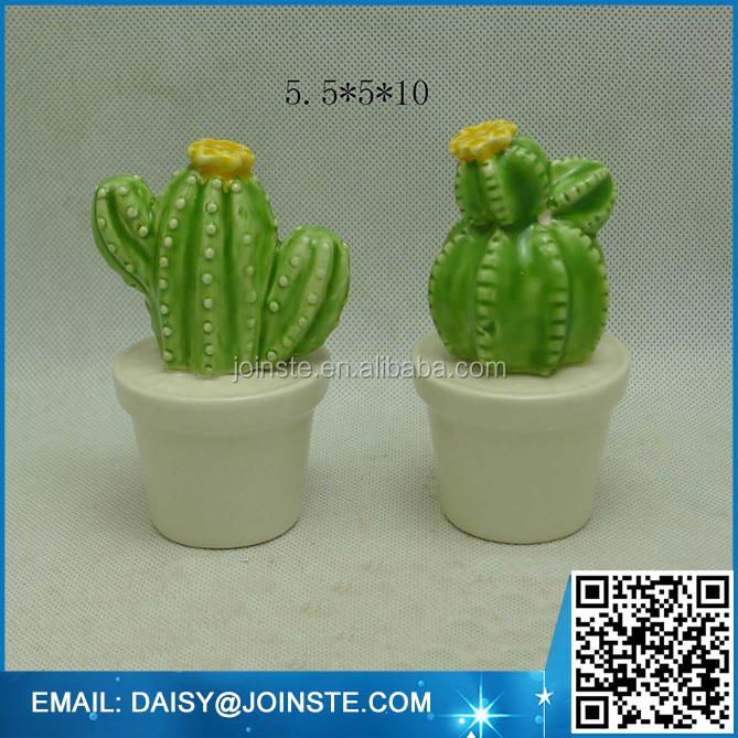 mini colorful cactus plants thailand,baby cactus plant