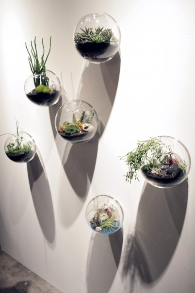 6pcs Set Wall Hanging Glass Fishbowl Wall Bubble Terrarium Wall Glass Vase For Home Decor House