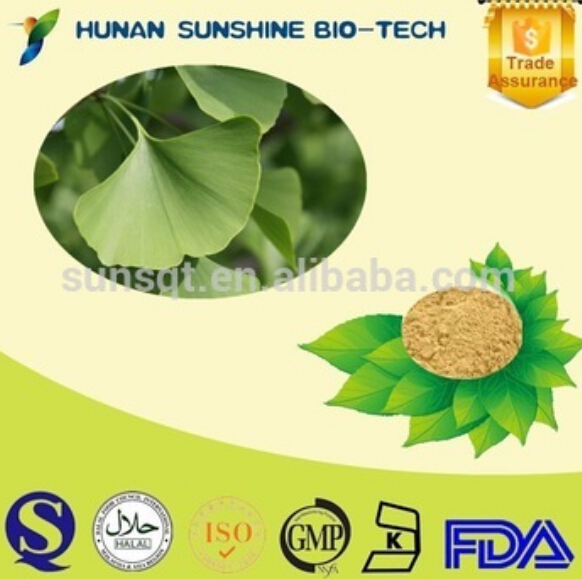USP/EP/CP Ginkgo biloba leaf extract/Water-soluble ginkgo biloba leaf extract powder