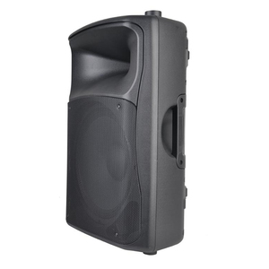 15 Inch High Power 350W Stage PA Sound System Audio Speaker PMT15