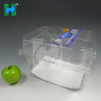Disposable Clear Plastic Fruit Box Clamshell Packaging Clear Disposable Plastic Packing Fruits