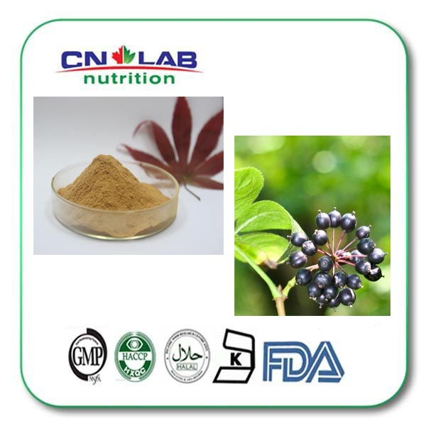 Pure Natural 0.8% 1.3% Eleutheroside Siberian Ginseng Extract