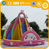 Kitty types inflatable water slides , family sizes Inflatable water park for kids