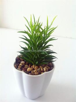 Hot New Design Artificial Office Desk Decoration Cactus Plant