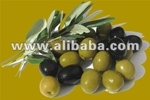 best green and black olives from turkey
