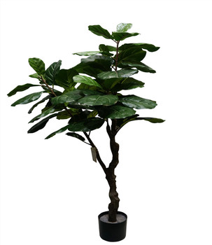 1 55m High Artificial Fiddle Leaf Fig Tree For Indoor Decoration Buy Artificial Fiddle Leaf Tree Artificial Pots Fig Tree Artificial Ficus Bonsai Tree Product On Alibaba Com