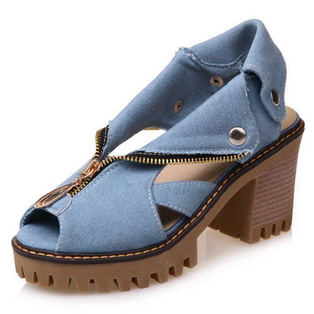 f1ec9b91af0e2 Get Quotations · SaraIris Women s Peep Toe Platform Chunky High Heel Fomer  Zipper Rivet Slingback Summer Pumps