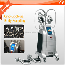 Professional cryolipolysis slimming machine price