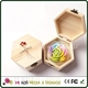Unfinished Wooden Chocolate Box Plywood Material Hexagon Wooden Cake Box