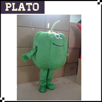 Newly designed vegetable costume for promotion