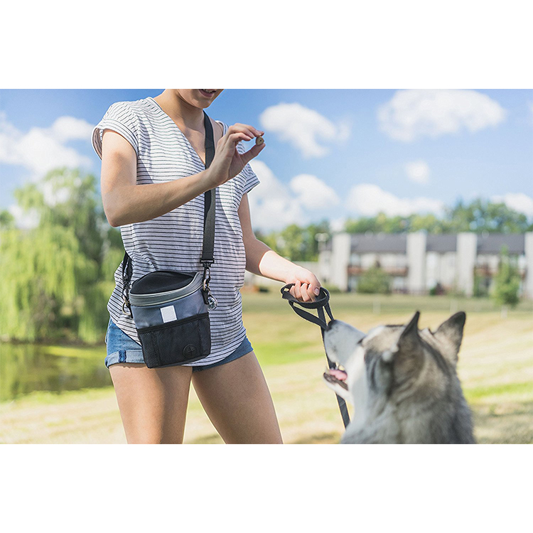 2018 Fashion OEM Phone Toys Balls Dog Jogging Treat Training Pouch With Poop Bag