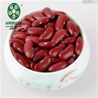 HQ China Dried and Raw Dark Red Kidney Sugar Bean Price 220-240