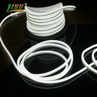 24 V color changing white color led flexible neon strip rope light