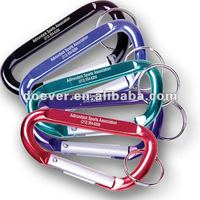 Aluminum D-shaped Carabiner Key Chain in Assorted Colors