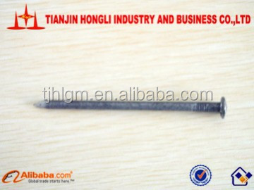 20 years directly factory Common iron wire nail/c