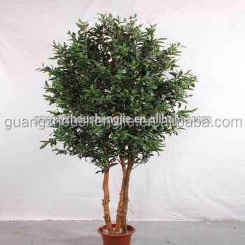 outdoor green plant artificial olive tree