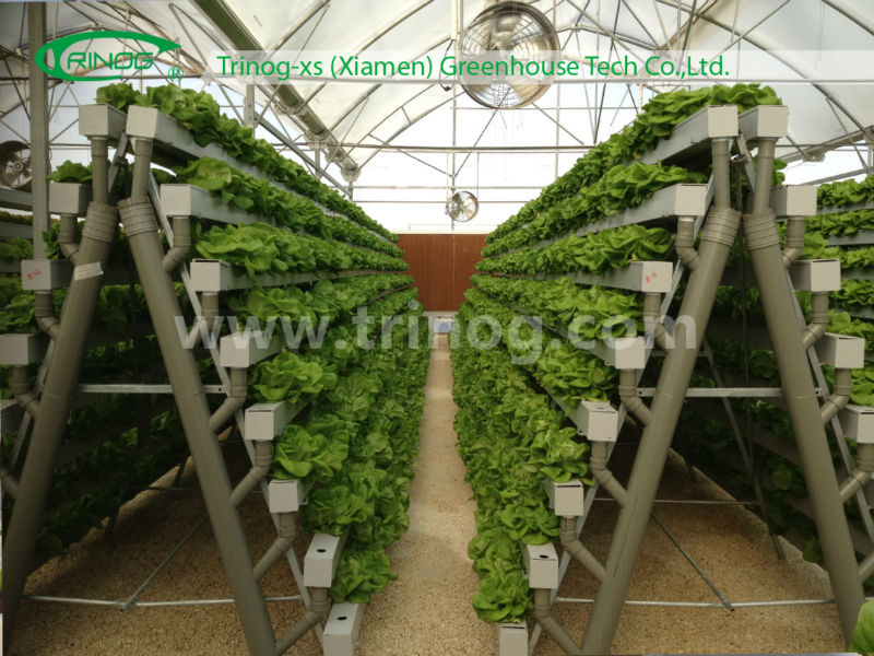 cultivo horizontal sistema hidropnico