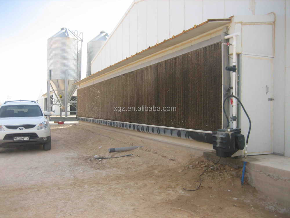 modern prefabricated automatic equipment chicken house