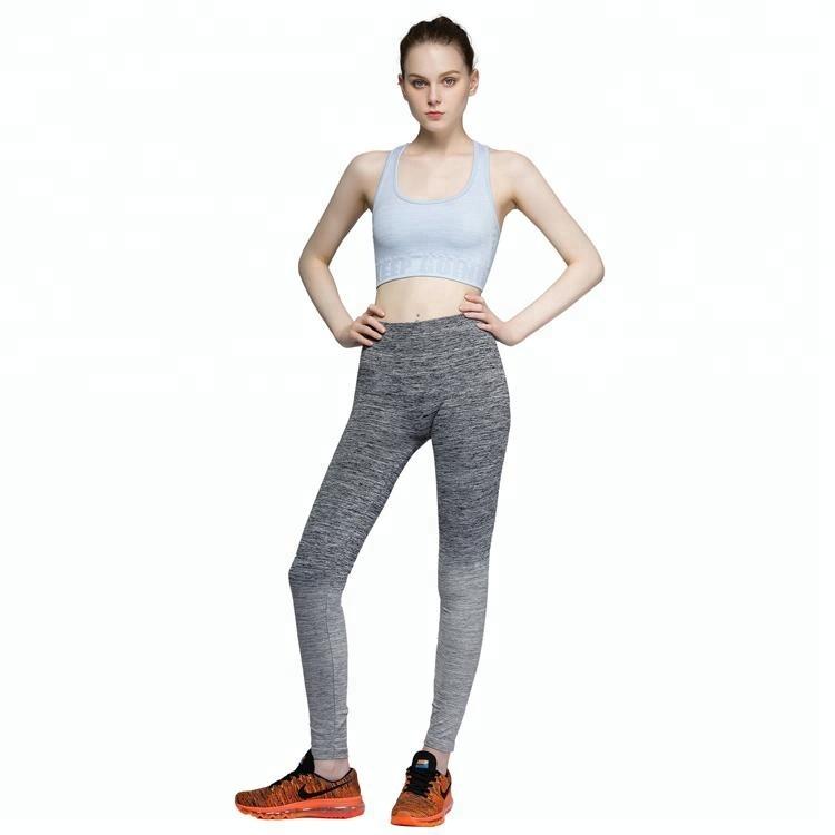 Cao tác động dệt kim liền mạch quần yoga đồng bằng xà cạp màu