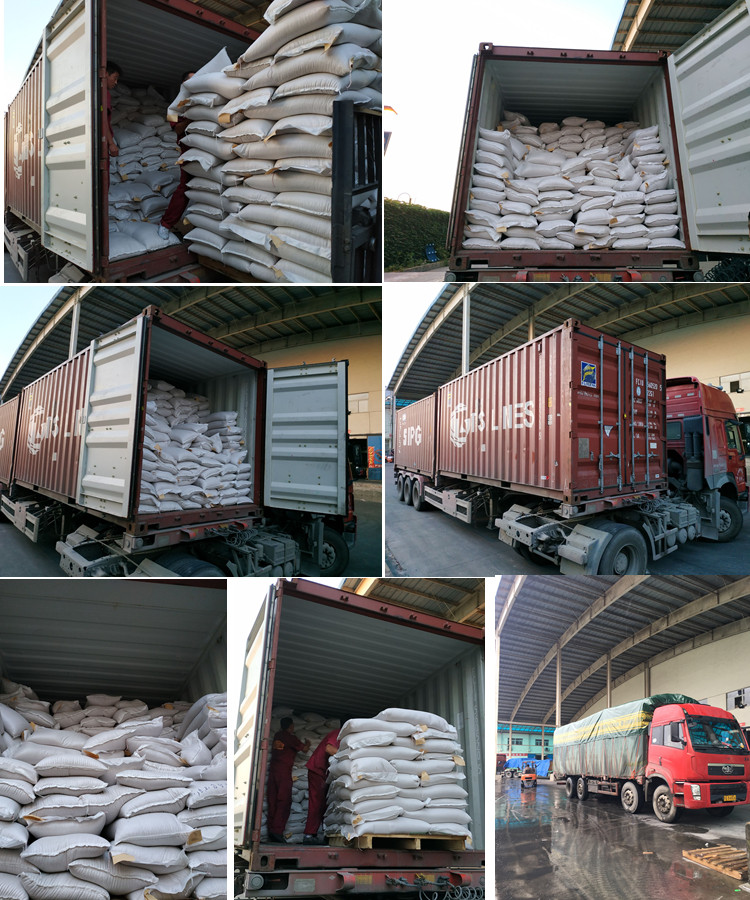 Bulk Baisha Peanut for Groundnut Buyer
