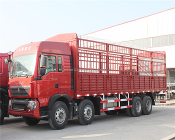 China HOWO 10 Ton Lorry Truck for Sale - China Truck