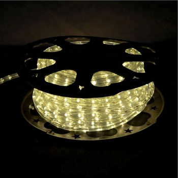 CE Rhos GS Quality IP65 Chasing effect RGB copper wires Flat Round 2 wires LED rope light