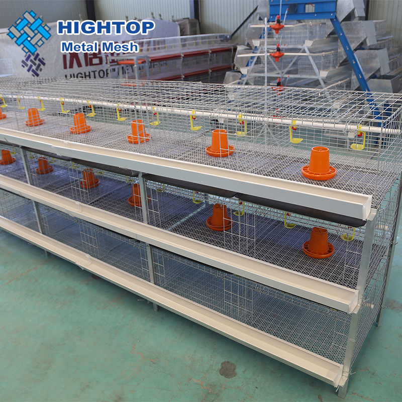 meat broiler chicken cage system for sale