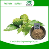 Low price of organic noni fruit powder with best quality and low price
