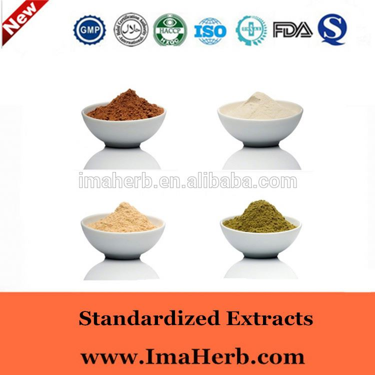 Top Grade EP Standard extract of ginkgo biloba leaves