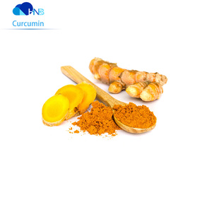 HNB Supply natural turmeric curcumin powder 95% QUALITY ENSURED with cheap price OEM curcumin capsules