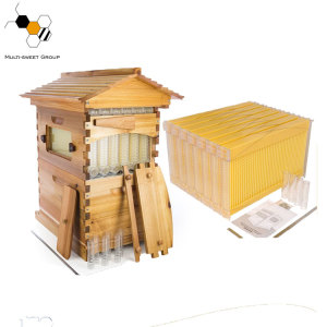 Food grade Plastic Auto Honey Flow Hive 7 Frame For beekeeper