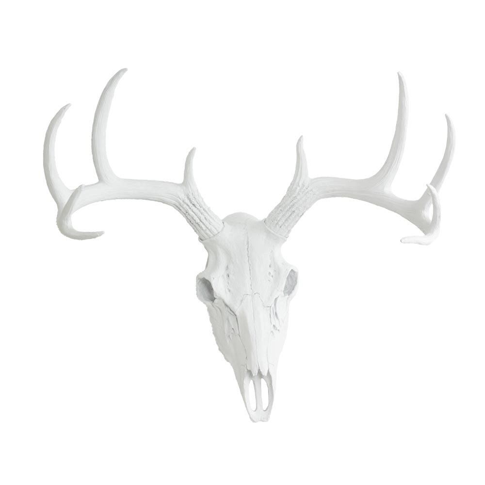 Deer Skull Animal Head By Wall Charmers White Faux Fake Taxidermy Resin Antlers Mount Decor