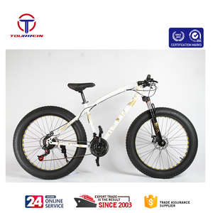 26 inch hi-carbon steel patent frame snow fat tire mountain bike double disc brake 21/24/27 speed for adult