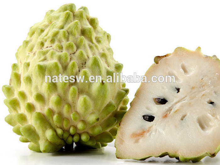 Graviola Extract Powder/graviola Fruit Extract/guanabana Extract ...