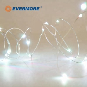 Evermore Outdoor Decoration Mini Starry Copper String Wire Led Light Chain