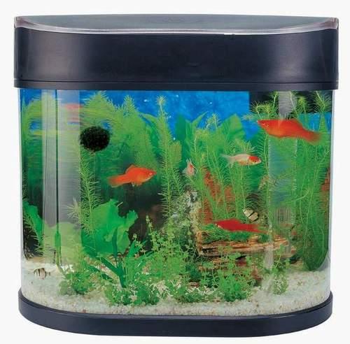 Fish Aquarium - Buy Aquarium Product on Alibaba com