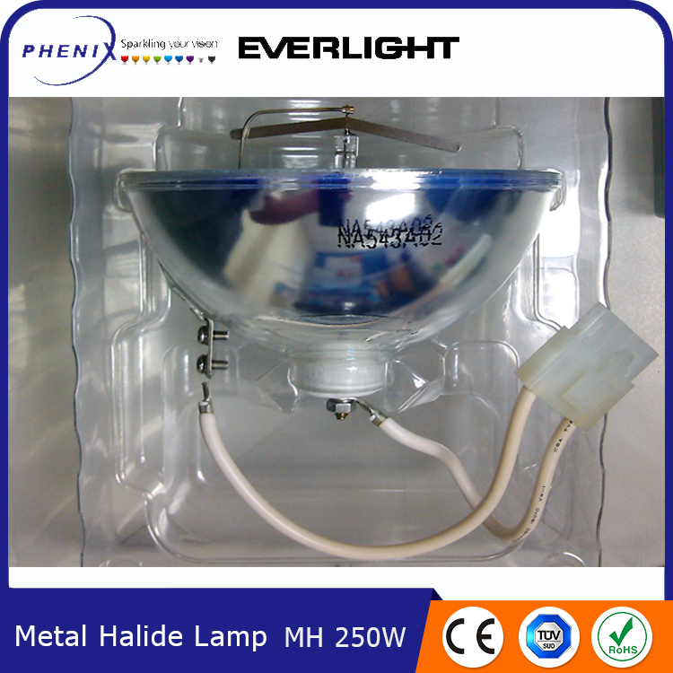 OEM acceptable lighting 250W metal halide mh
